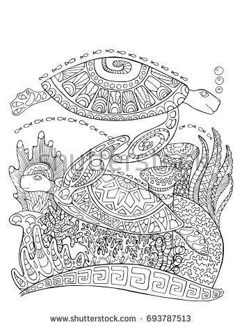 Sea Turtle Doodle Style Coloring Page Underwater Vector Illustration For Adult Turtles With Corals Black Line Bordered