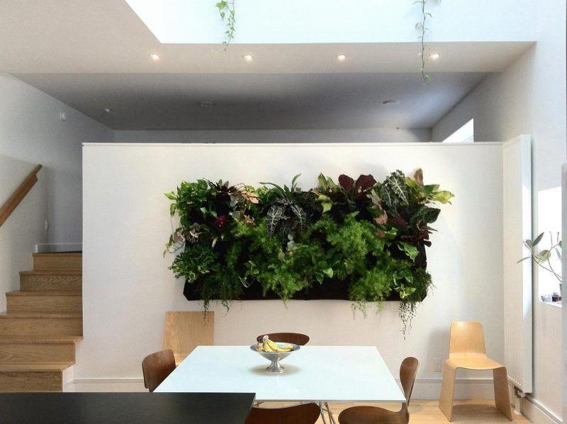 Wohnzimmer in Naturfarben mit weißer Couch, zwei Pflanzen - pflanzen für wohnzimmer