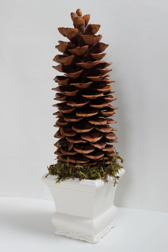 Giant Pinecone Topiary Ill Be Home For Christmas Pine Cones Pine Cone Decorations Topiary