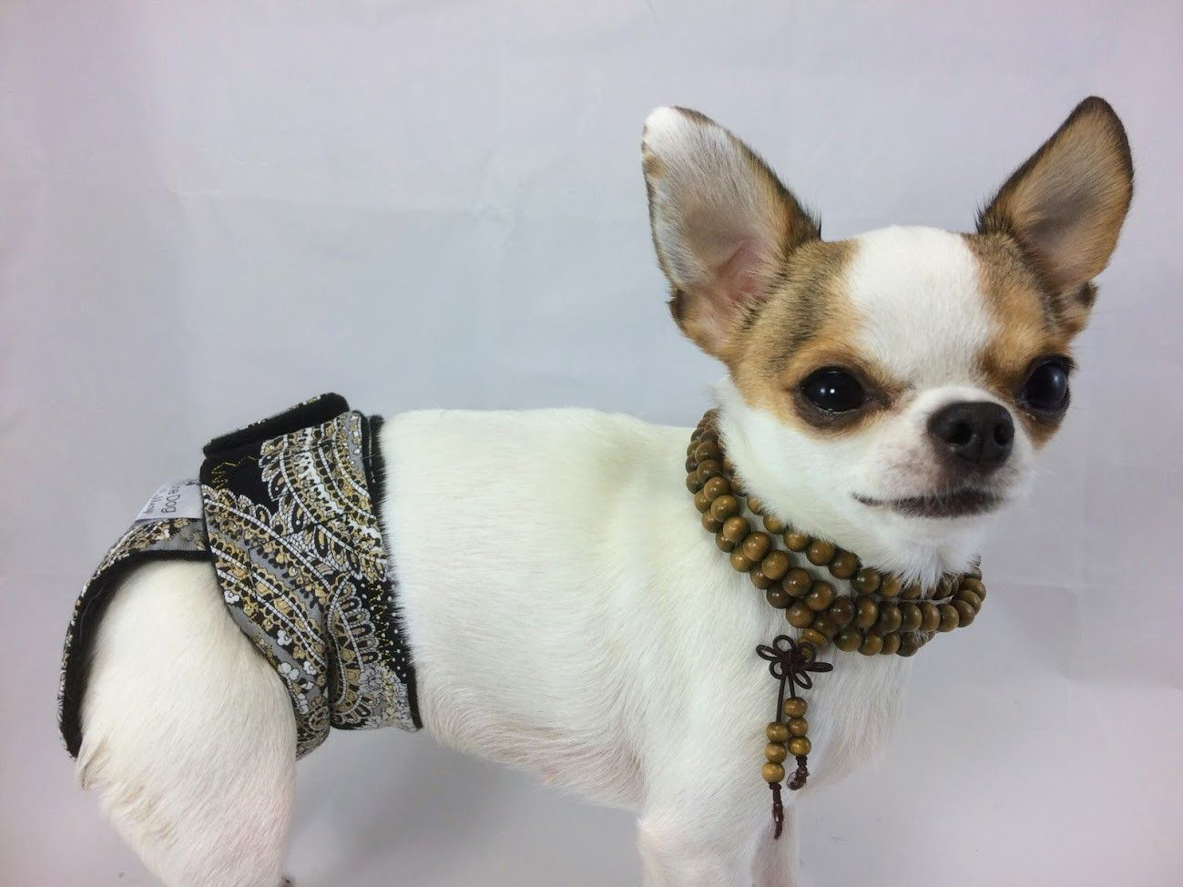 Black Silver Gold Paisley Female Girl Dog Diapers Group One