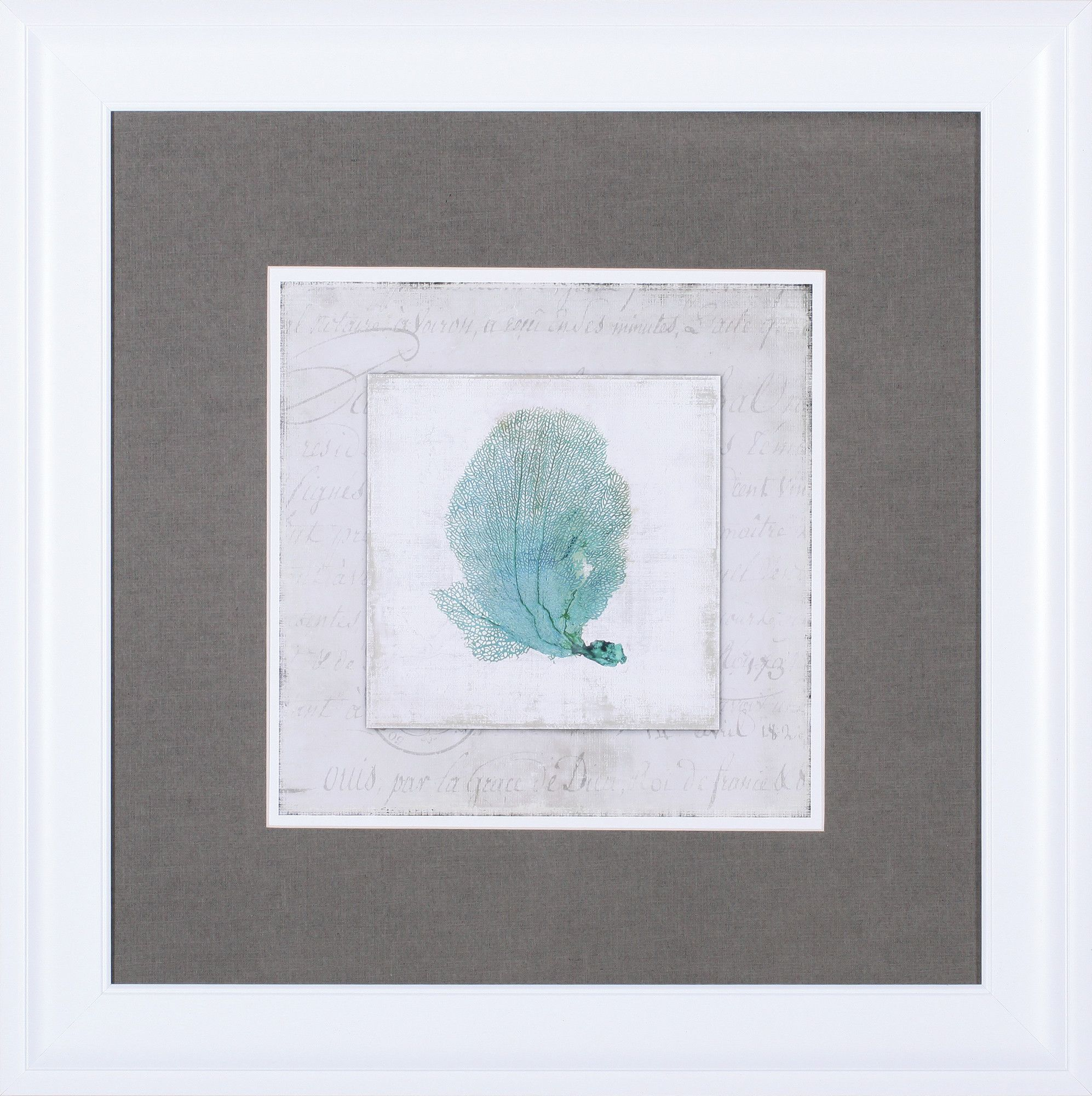 Chambray Coral Ii By Aimee Wilson Framed Graphic Art
