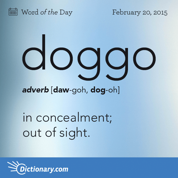 Dictionary.com's Word of the Day - doggo - Informal. in concealment