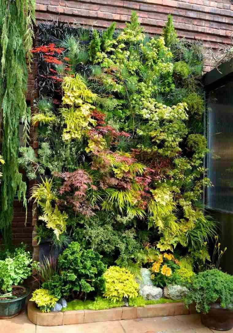 Plante Sur Les Murs fabriquer un mur végétal extérieur avec plantes succulentes