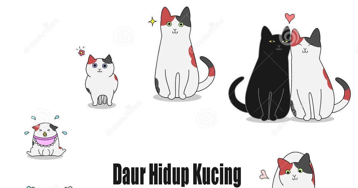 Terbagus 30 Gambar Kartun Daur Hidup Kupu Kupu Daur Hidup Nyamuk Katak Kupu Kupu Kecoak Dan Kucing Download Daur Hidup Kupu Ku Kartun Gambar Kartun Gambar