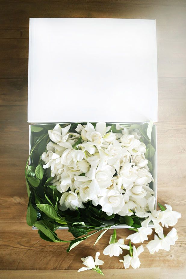 How To Get Luxury Blooms Delivered To Your Door Flower Subscription Flower Delivery Luxury Flowers