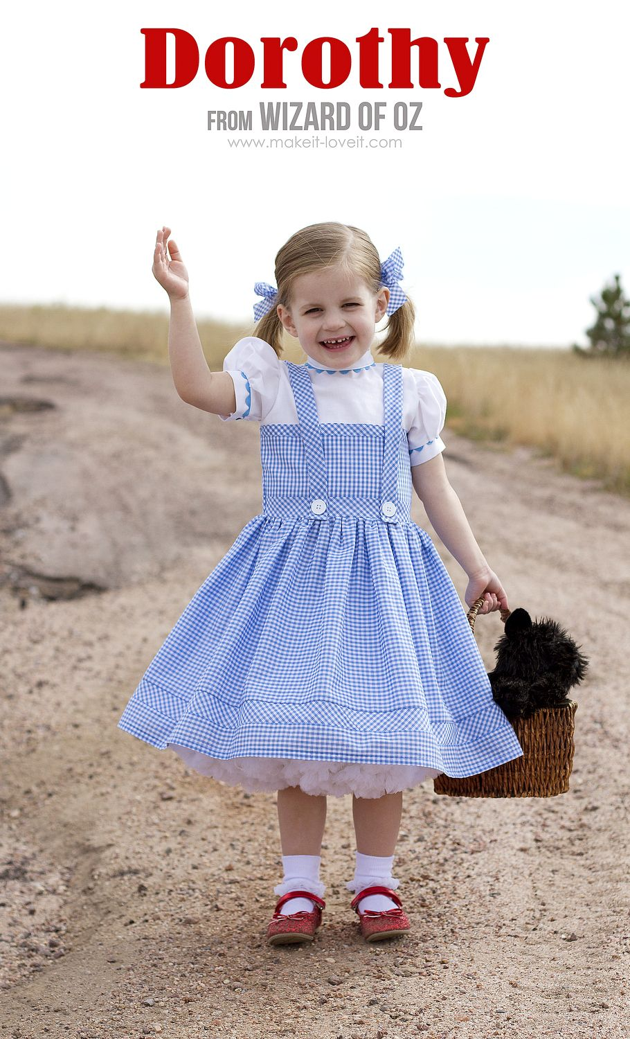 DIY Dorothy Costume (from Wizard of Oz) | via Make It and Love It ...