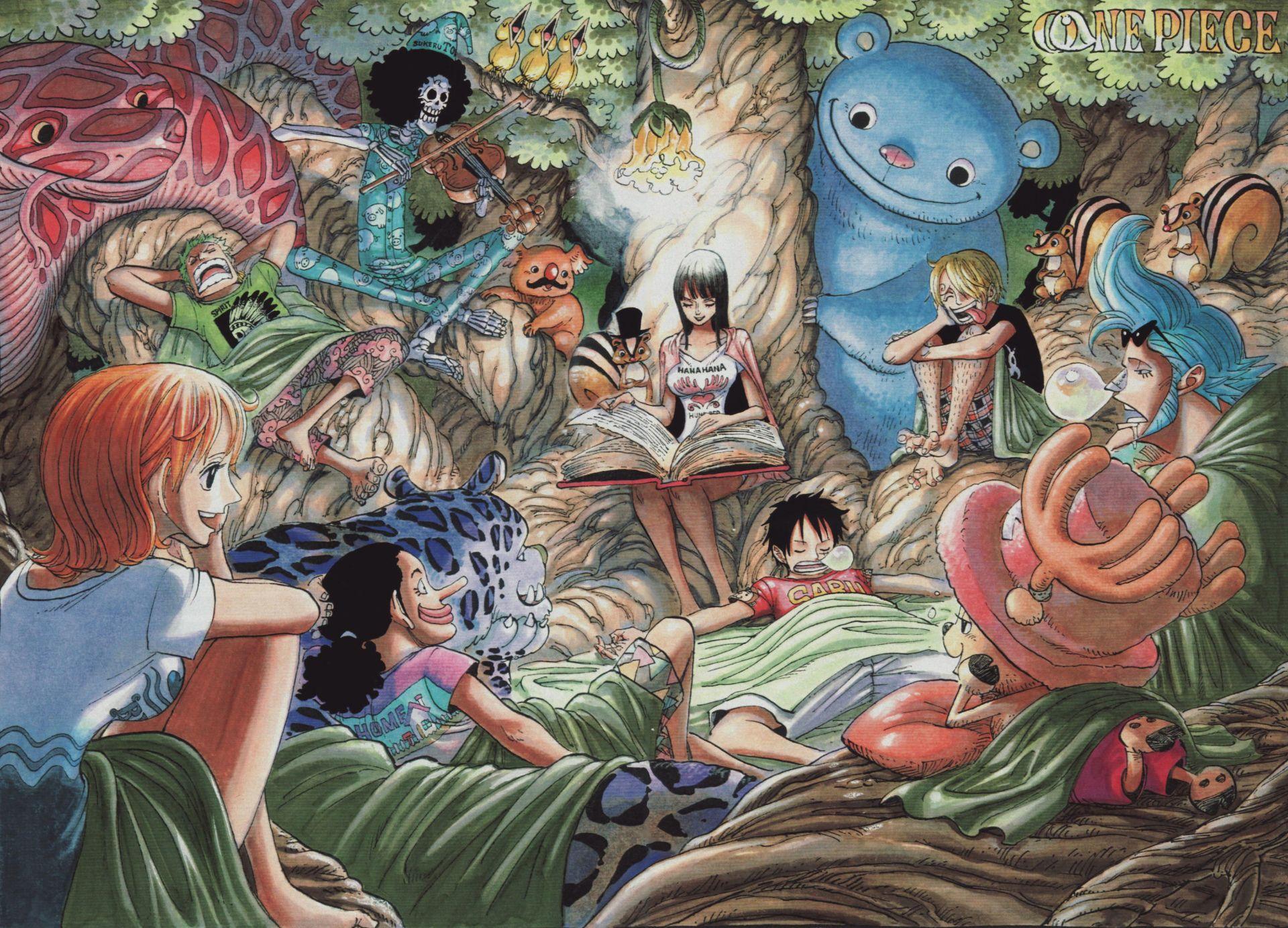Poster One Piece Luffy Zoro Japan Anime Room Club Wall Cloth Print 17