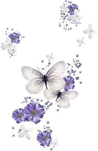 Pin De July Caro En House Deco Pinterest Mariposas