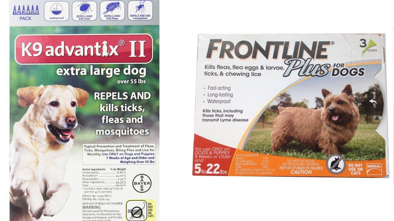 Top 5 Best Flea Medicine For Dogs Reviews Best Flea And Tick Medicine For Dogs Flea Medicine For Dogs Fleas Dogs