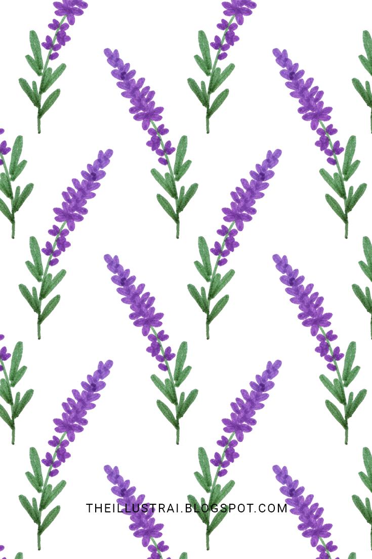 The Illustrai How To Draw Lavender In 6 Easy Steps Flower Drawing Flower Art Flower Doodles