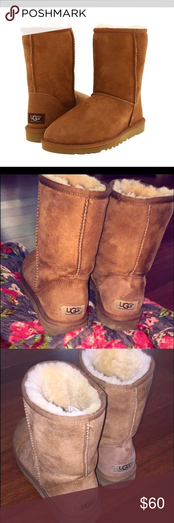 UGGS Classic Short - 6 Chestnut Brown PRE-LOVED 💫