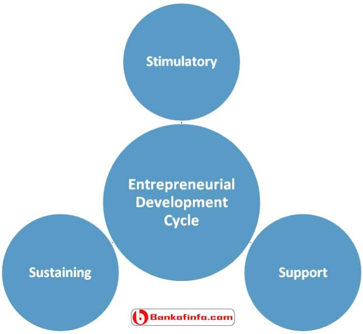 entrepreneurship development life cycle Get this from a library the life cycle of entrepreneurial ventures [simon c parker] -- discusses topical issues in entrepreneurship organized around the various stages of venture creation, development and performance.