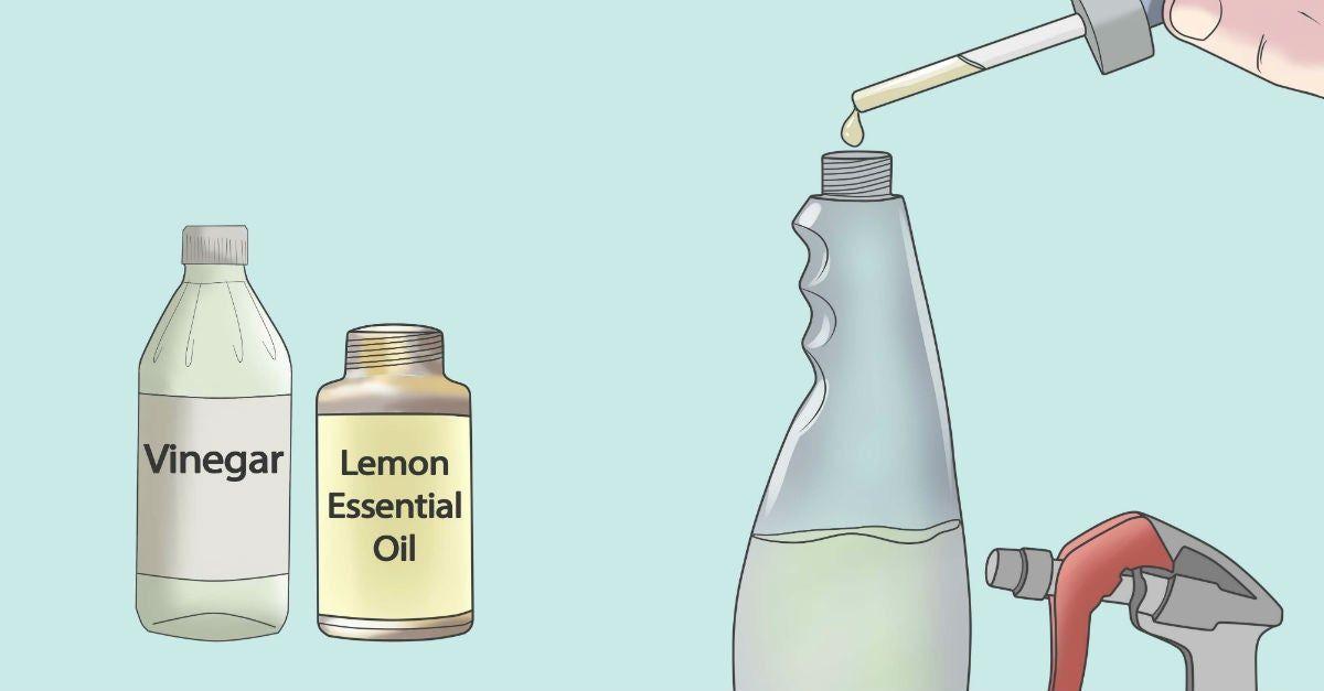 Alergico A Los Productos De Limpieza Limpia Tu Casa Con Aceites