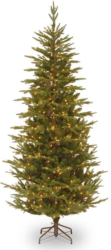 national tree company 75 ft pre lit frasier grande slim artificial christmas tree - Pre Lit Slim Christmas Tree