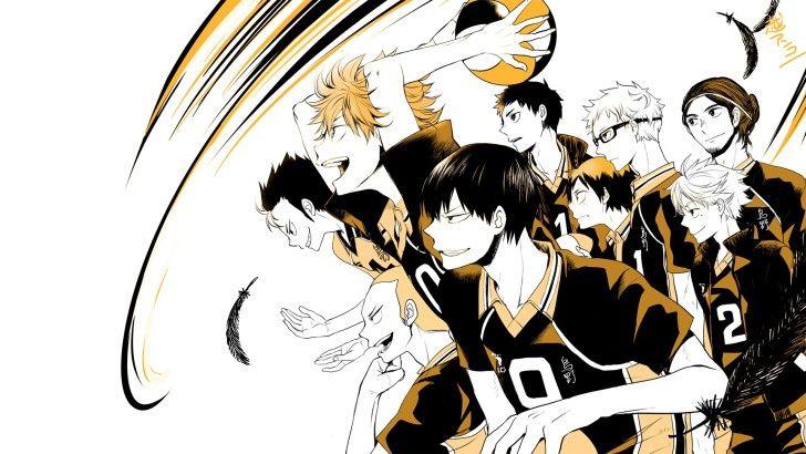Karasuno Volleyball Team Haikyuu Anime Wallpaper