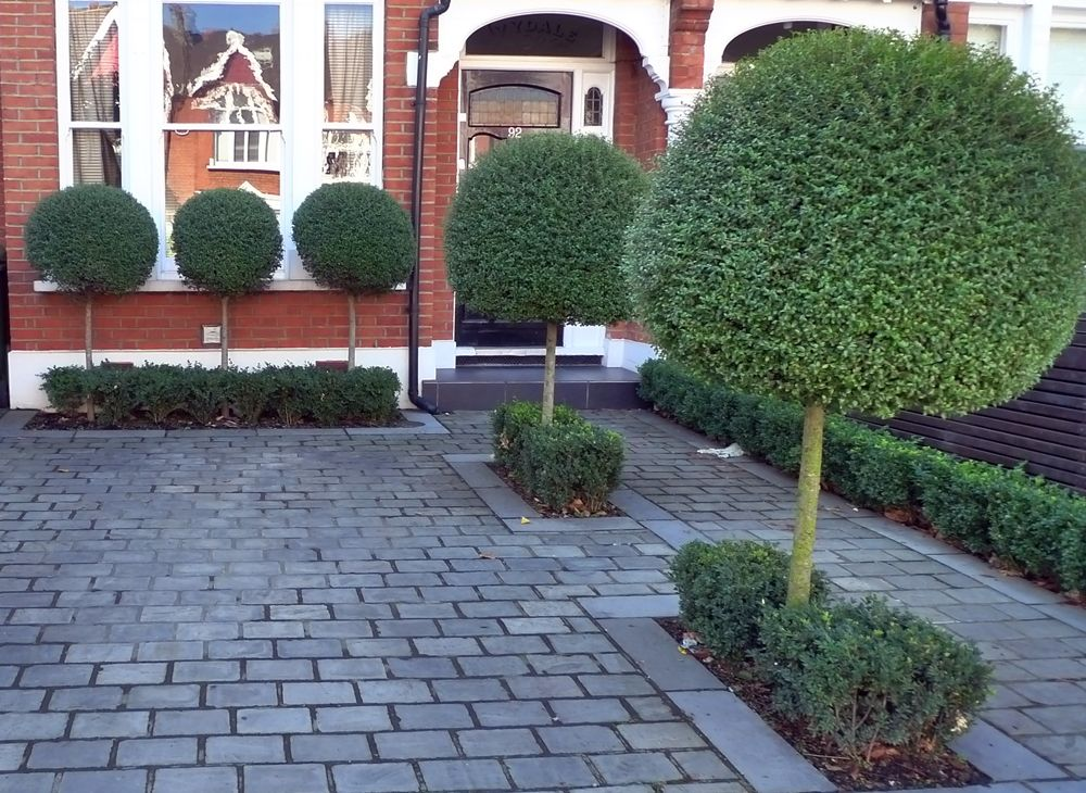 Driveway block paving with topiary planting driveway for Front garden designs uk