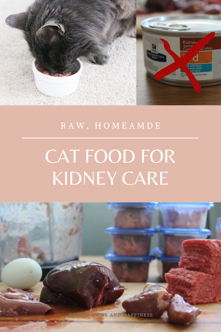 Raw Homemade Kidney Care Diet for Cats Health, Home