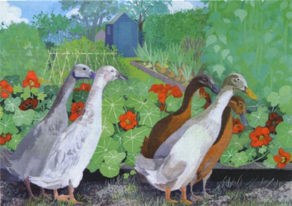 Allotment Ducks by Sheila Smithson in 2020 Artist, Art