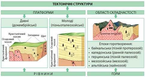 Тектонічні структури та пов'язані з ними форми рельєфу - Підручник з Географії (рівень стандарту). 11 клас. Кобернік - Нова програма | Geography, History, Class