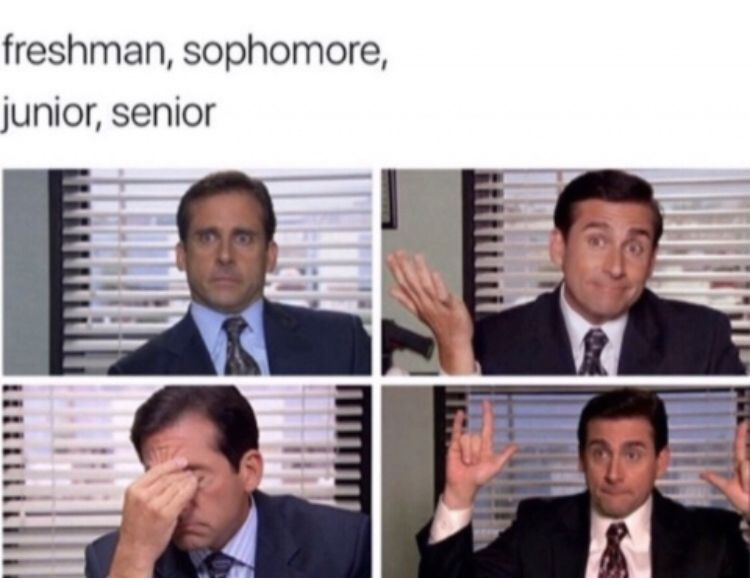 Michael Scott In 2020 Office Quotes Funny Office Memes Office Jokes