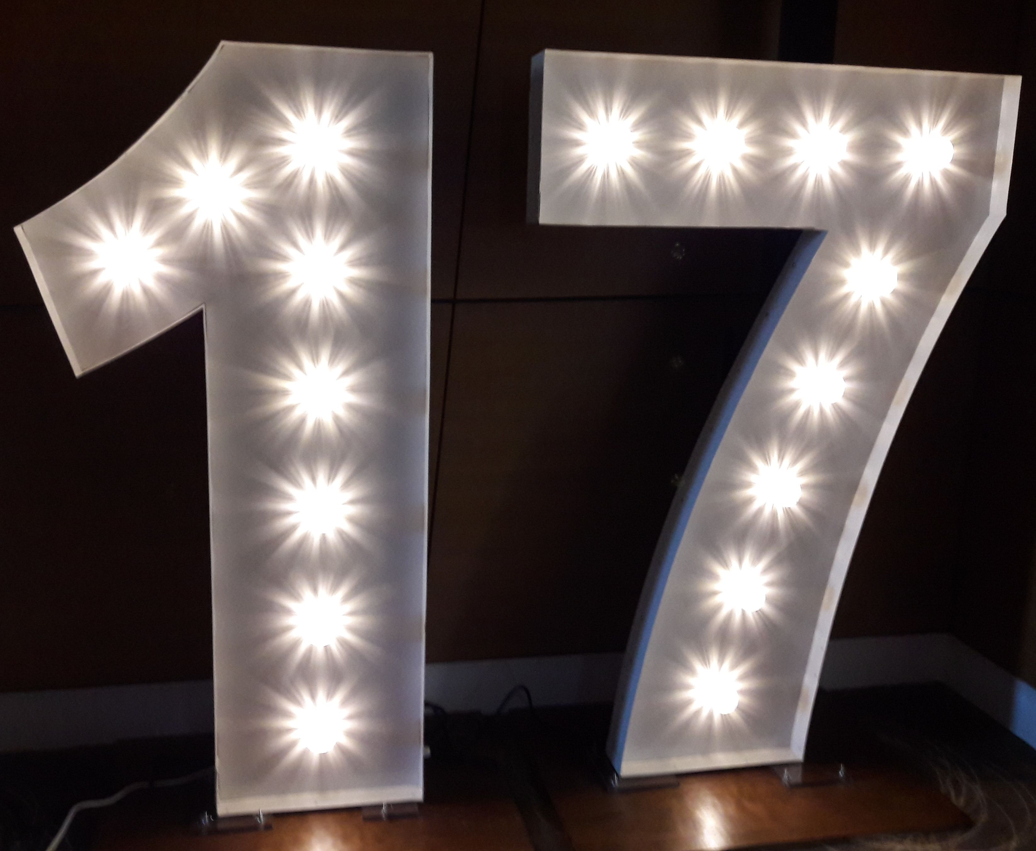 17 Giant Illuminated Number Lights Light Up Letters Mirror Photo Booth Lights