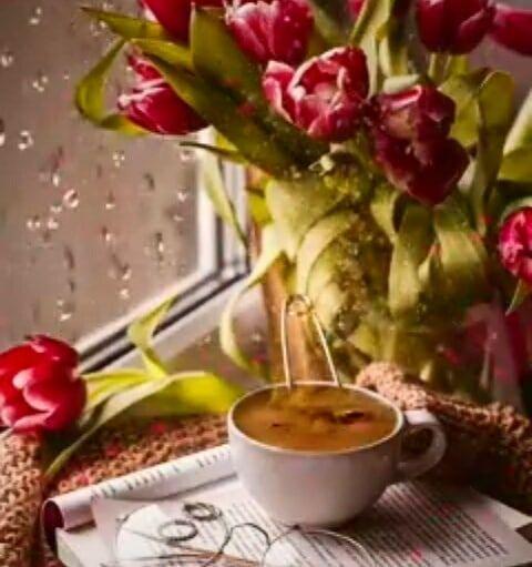 Good morning art#creative#body#love#cool#great#beautiful#gorgeous#man#feeling#choise#door#key#luck#fortuna#present#smell#parfume#music#strong#weak#natute#allow#choice#true#lie##seriously#culture#music#museum#comfort