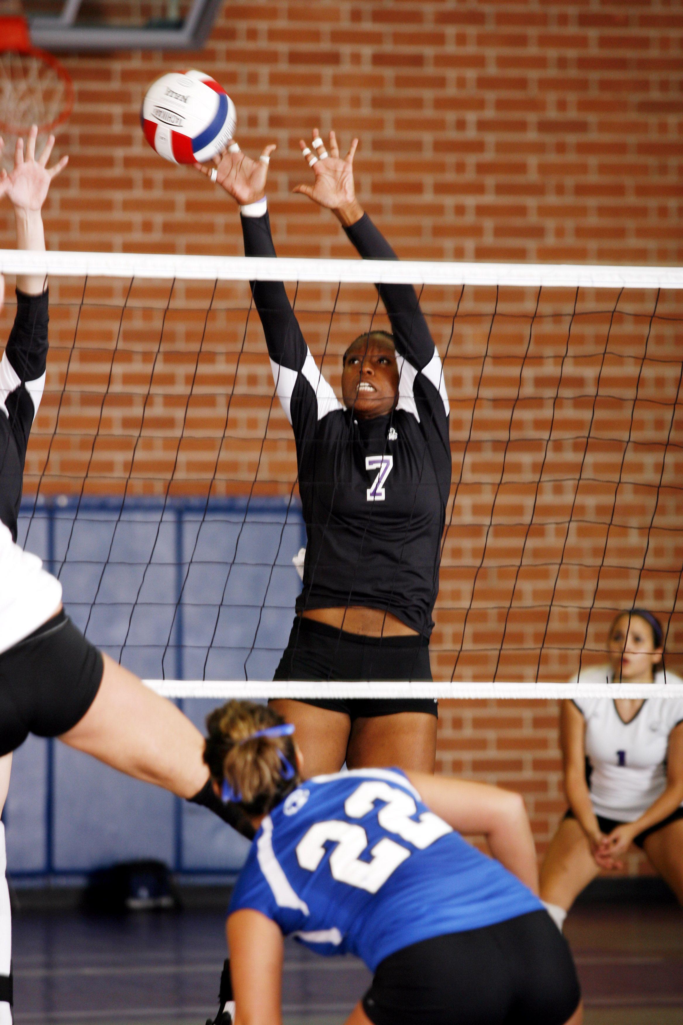 Fighting Koalas Volleyball Team At Columbia College Sc Columbia College Volleyball Team College
