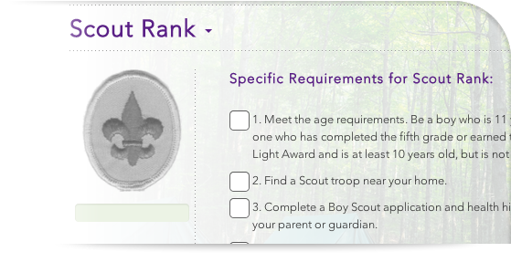 The requirements for each rank and every merit badge are
