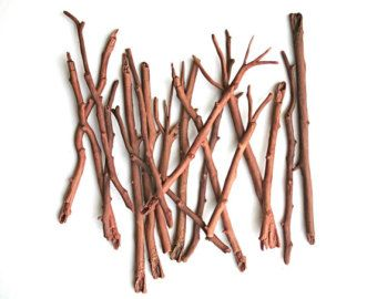 Edible Branches, Sticks and Twigs - Chocolate Flavor - Confection Embellishment, Holiday Gift Giving