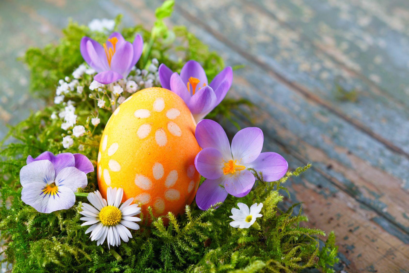 Nainen laittaa partavaahtoa ja väriainetta kananmuniin – tuloksena syntyy nättejä pääsiäismunia
