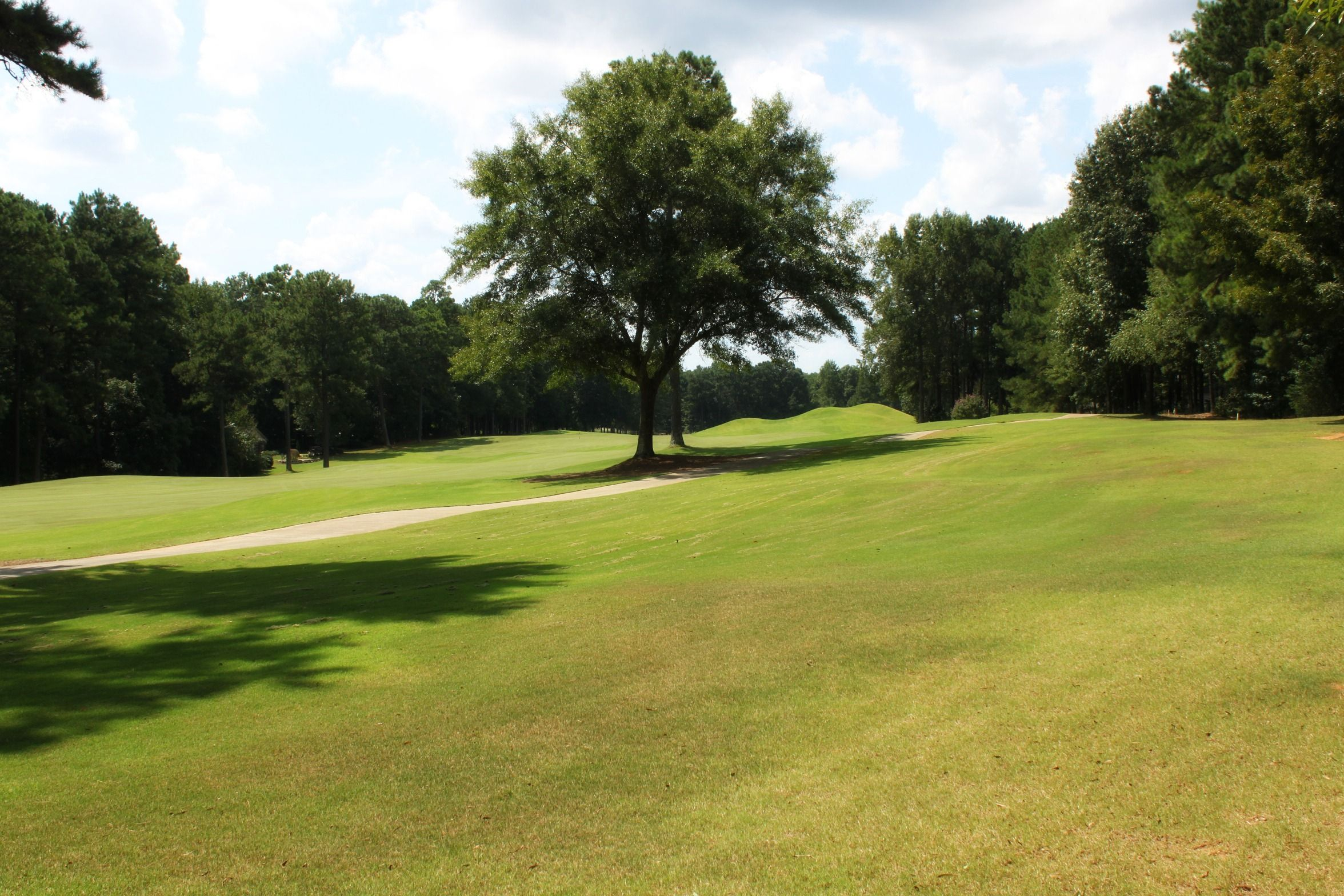 These Golf Course Views in The Landings can be yours