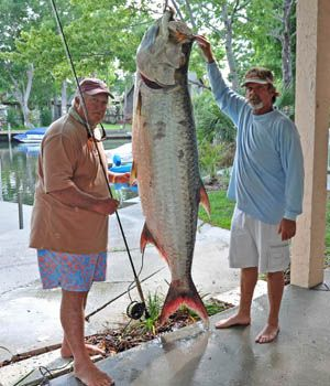 194 Tarpon 12 Fly World Record Caught By Tom Evans With Guide Al