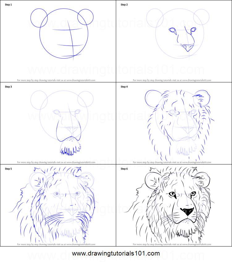 How To Draw Lion Head Printable Step By Step Drawing Sheet Drawingtutorials101 Com Abstract Lion Painting Lion Painting Animal Drawings