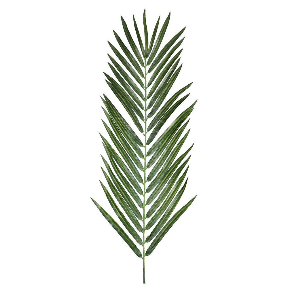Areca palm leaf dzd label design pinterest plantas acuarela y pinturas de hoja - Real areca palm ...