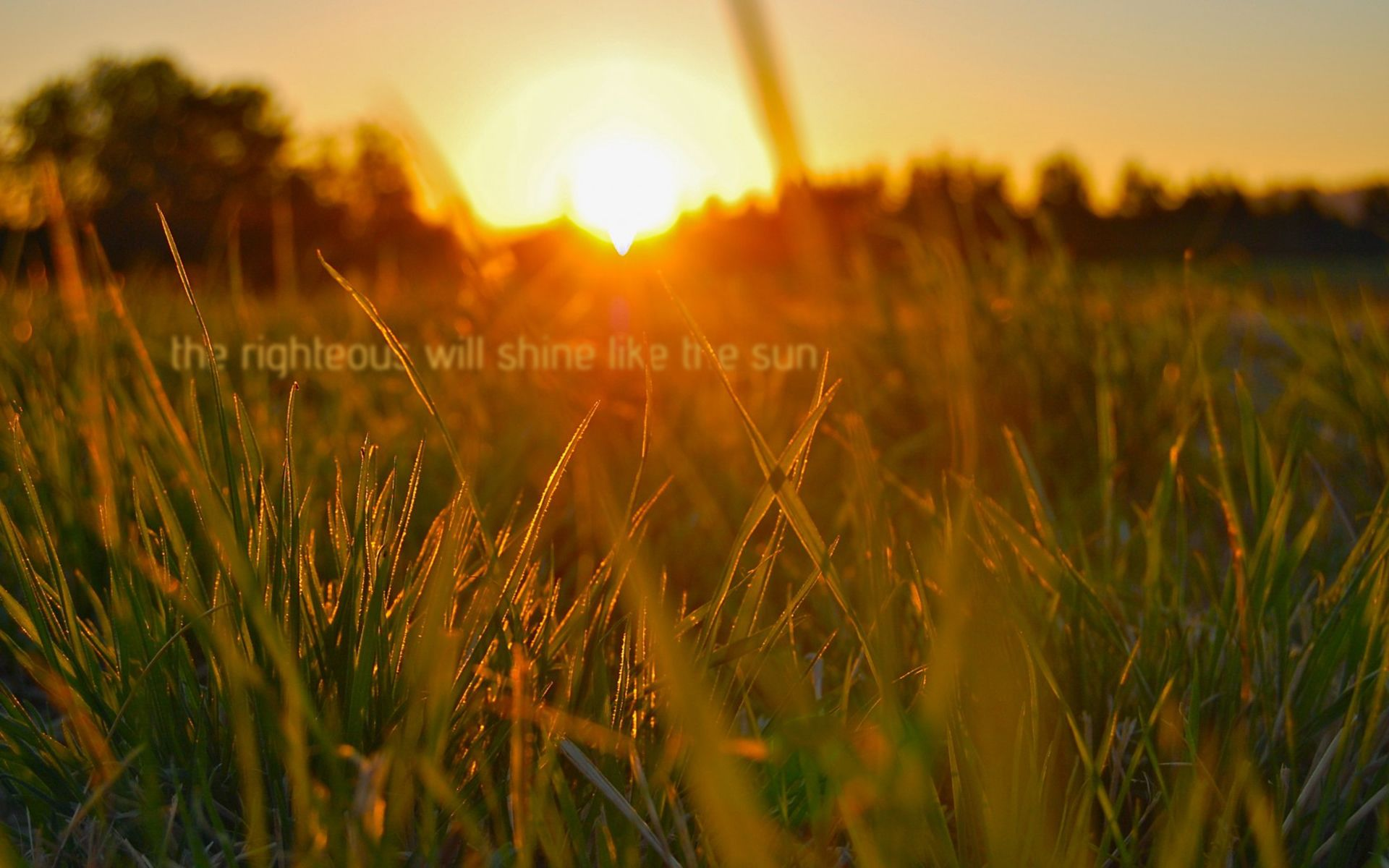 Then the righteous will shine like the sun in the kingdom