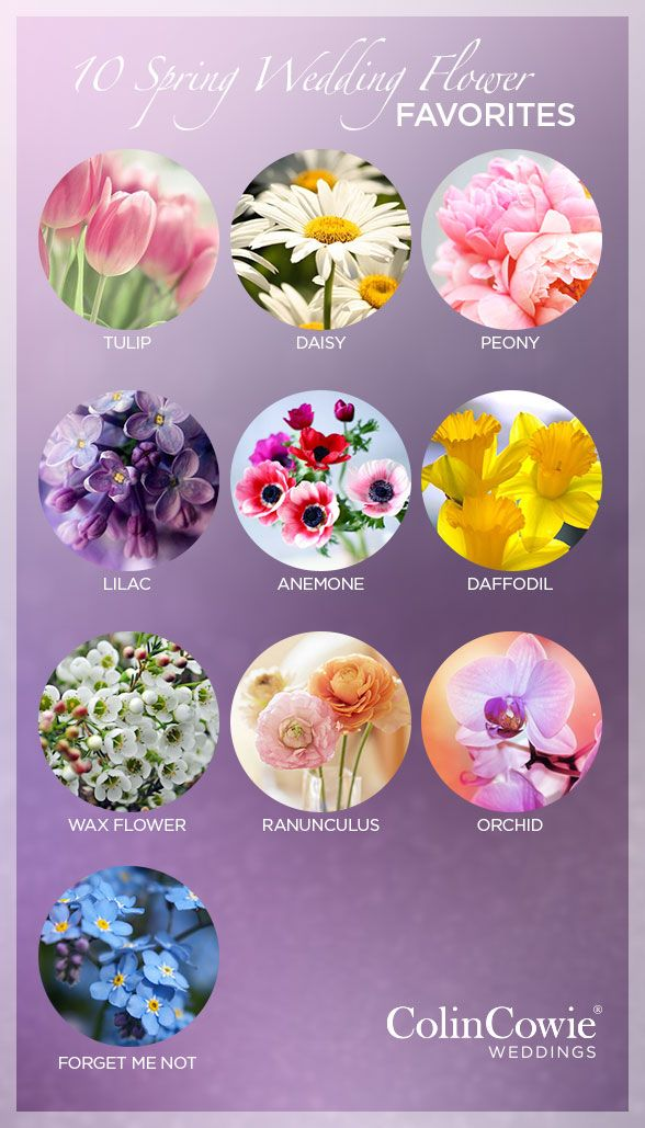 10 Spring Wedding Flower Favourites Via Colin Cowie Weddings