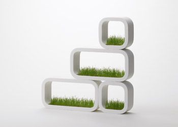 Lawn in your Flat