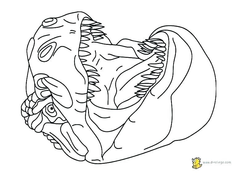 Free Online T-Rex Colouring Page - Kids Activity Sheets: Dinosaur ... | 576x792