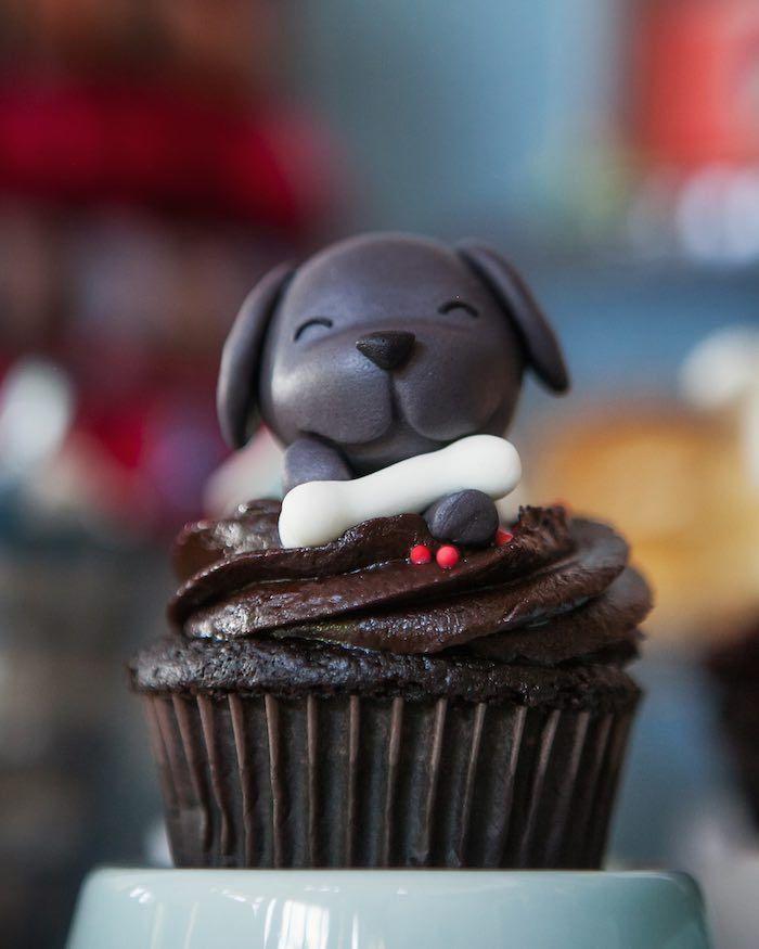Beanie Boos Pet Adoption Themed Birthday Party #petadoption