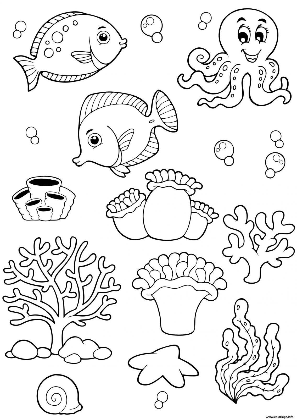 Coloriage Animaux De La Mer A Imprimer Coloriage Animaux Coloriage Poisson Coloriage Mer