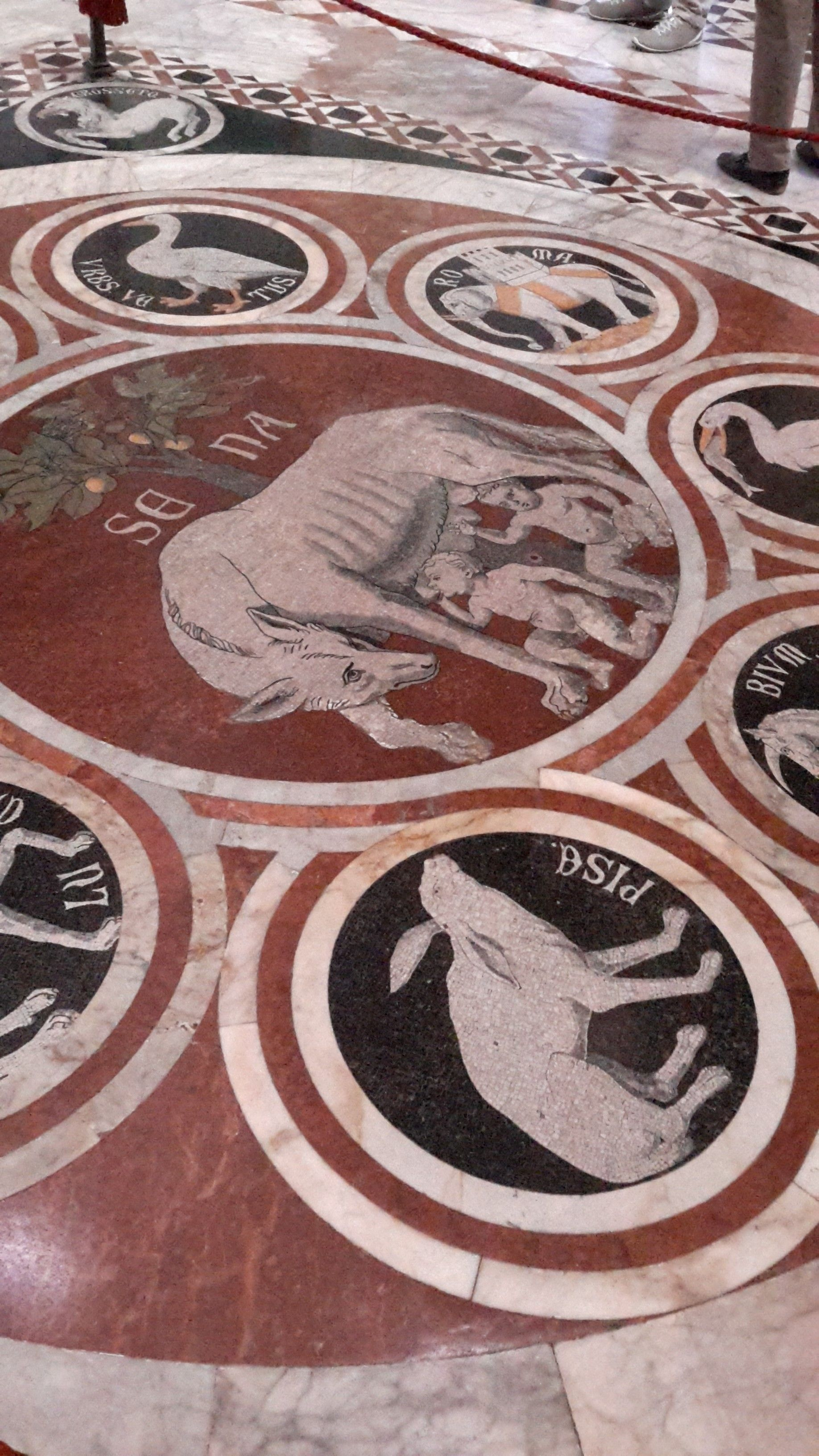 Pavimento del Duomo di Siena - La Lupa senese tra i simboli delle città alleate - Ignoto (rifatto da Leopoldo Maccari) - 1373