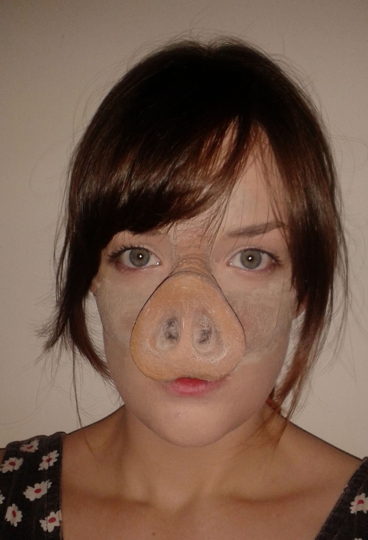 pig nose prosthetic