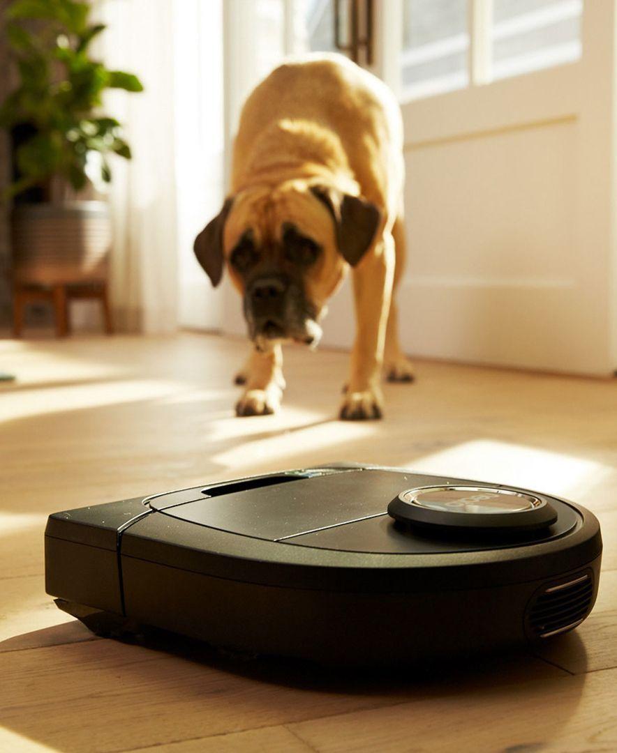 D505 Pet Allergy Botvac Vacuuming Robot Arrows Pet Allergies Cleaning Pets