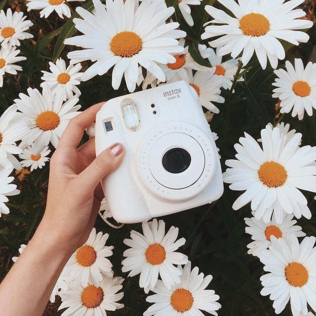 polaroidpictures Polaroid photography, Polaroid