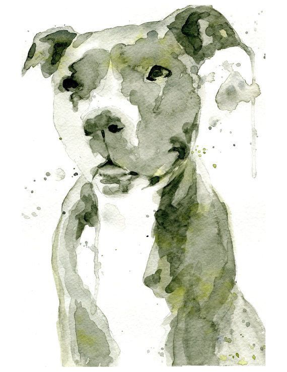 Beautiful Watercolor Art Watercolor Dog Dog Art Pitbull Art