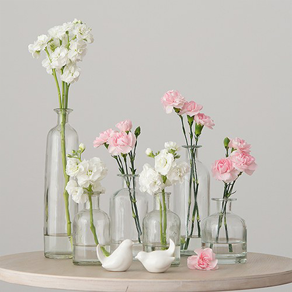 6 Pc Assorted Size Decorative Glass Bottle Vases Set Glass