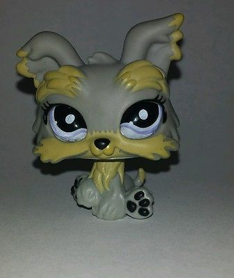 Littlest Pet Shop Grey Gray Yorkie Dog Purple Glass Eyes #883 Preowned LPS