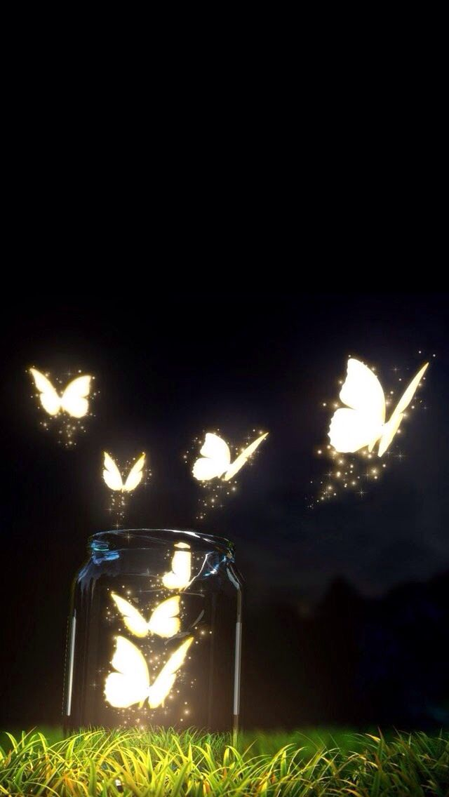 Brillan las mariposas