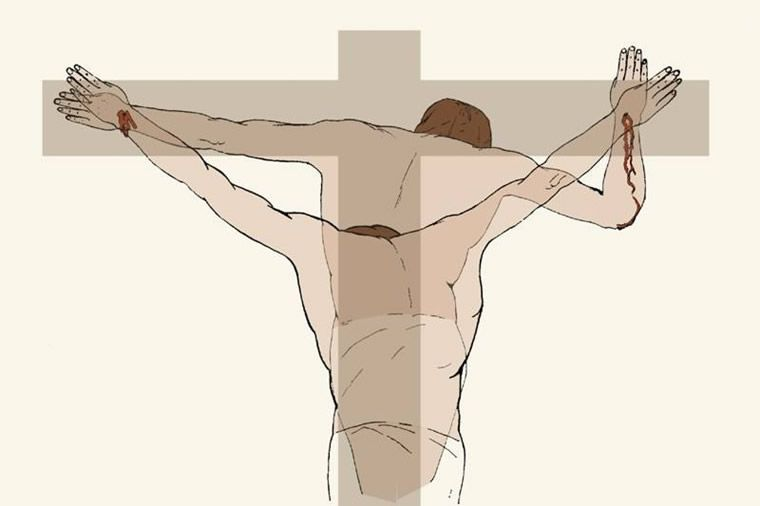 """""""Moreover, the arms would have been free of blood prior to death because the large nails would have sealed the wounds, the blood pressure was very low, and the arms were in an elevated position."""" -Dr. Frederick Zugibe, The Crucifixion of Jesus: A Forensic Inquiry"""