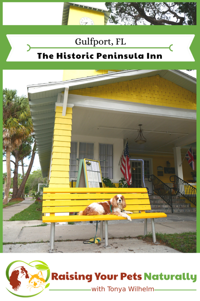 Dog Friendly Gulfport Florida Hotels Inns And Bed And Breakfast The Historic Peninsula Inn Review Florida Hotels Florida Beaches Vacation Gulfport